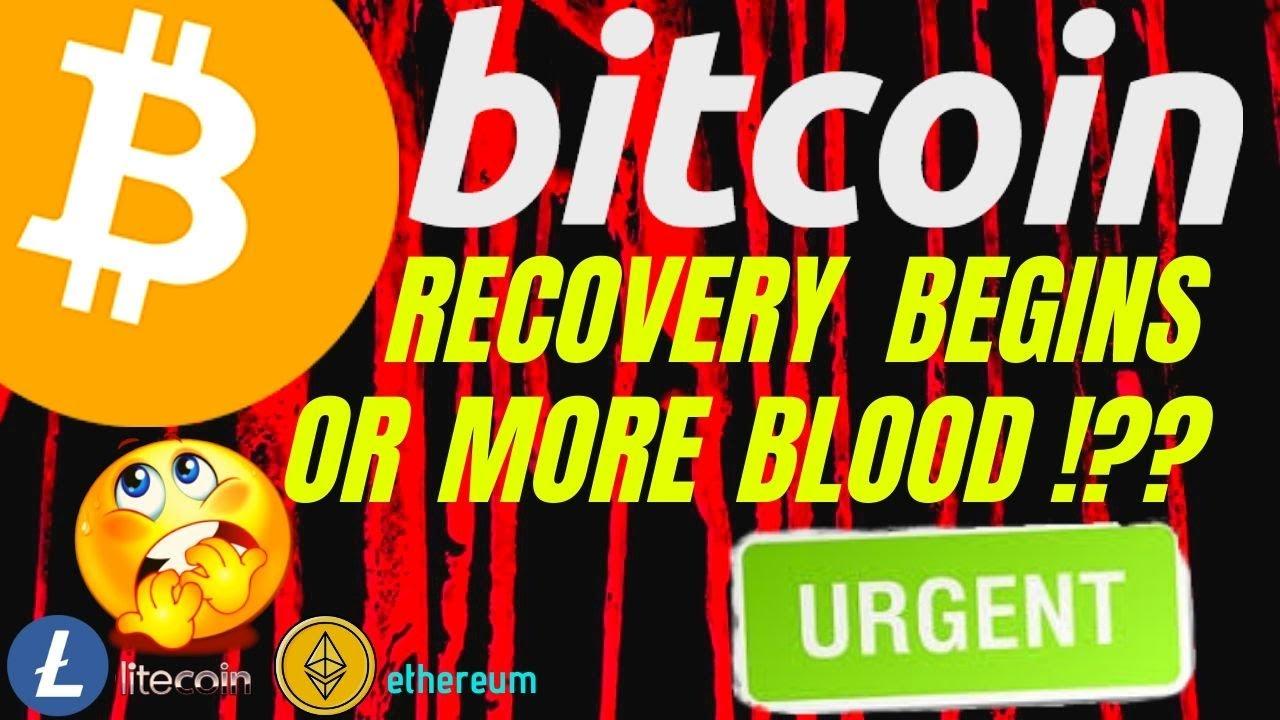 investuoti bitkoin ar litecoin