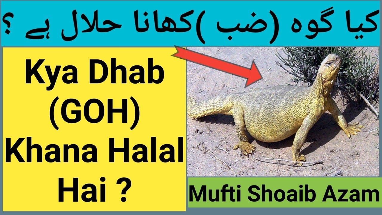 opciono prekyba halal atau haram