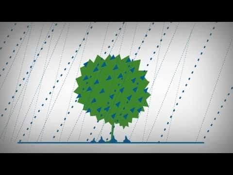 sprendimų medžio prekybos sistema
