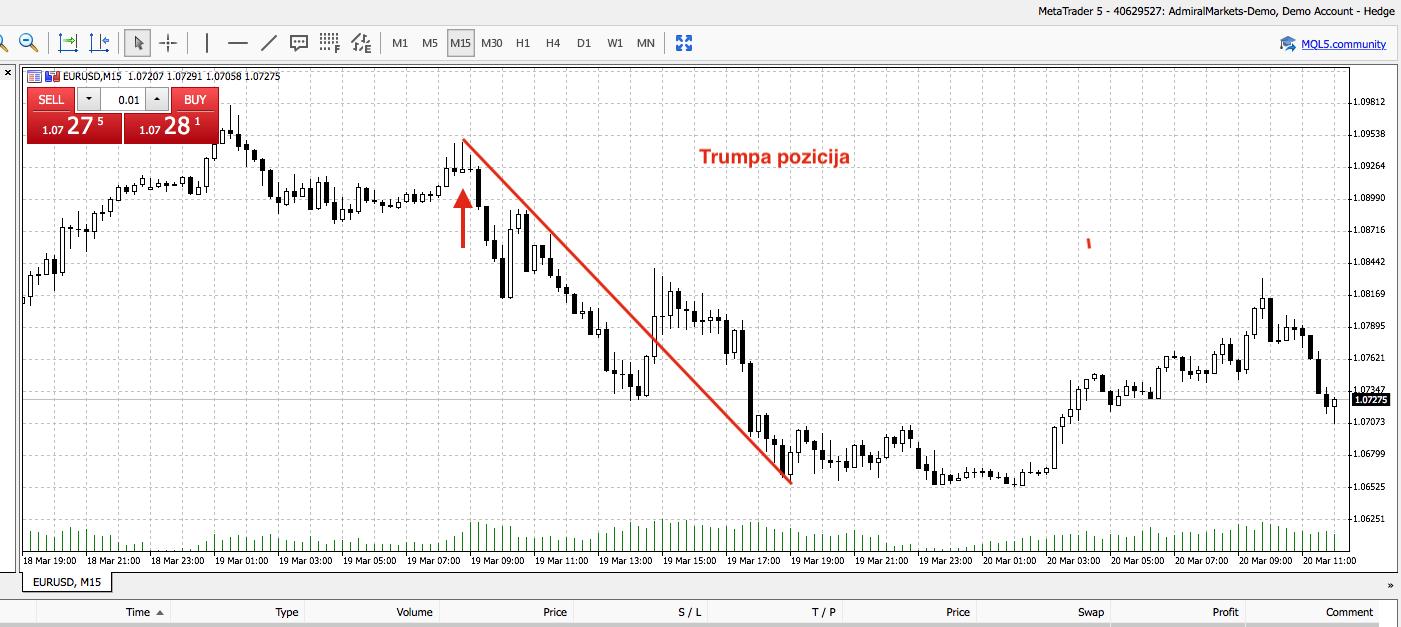 prekybos opcionais strategijų rūšys prekybos strategijos mql4