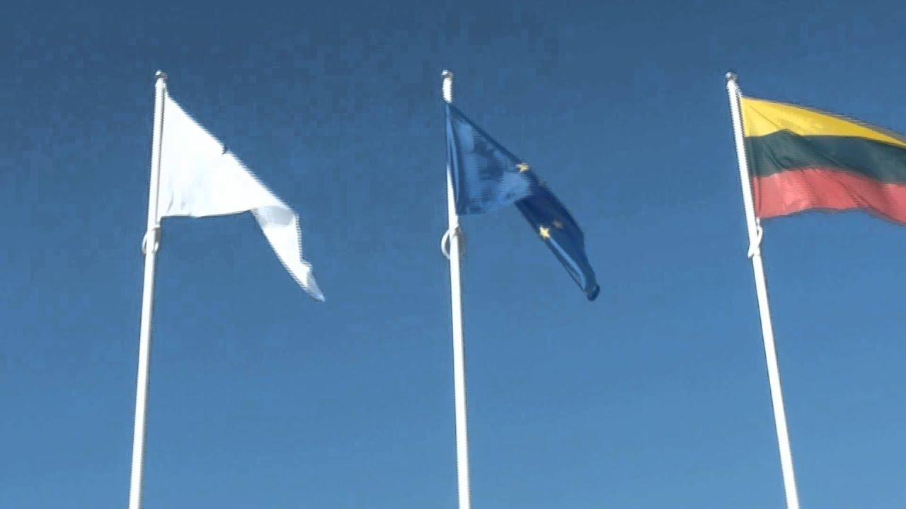 vėliavos prekybos strategija