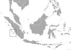 dvejetainė parinktis wikipedia indonesia